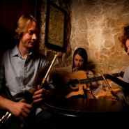Presentation of Traditional Irish Music in Denmark