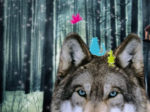 CoisCéim's The Wolf and Peter Heads out on Tour