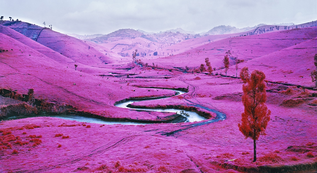 Richard Mosse - The Enclave (2013)